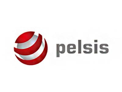 Dies ist das Firmenlogo von Pelsis