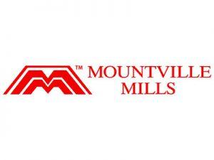 www.mountville.eu